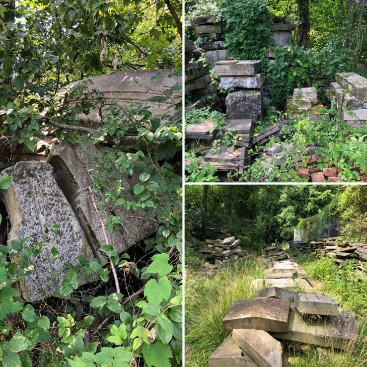 Capitol Stones in DC's Rock Creek Park removed from government buildings in the 1950s to this wet shaded spot where they are cleaner than buildings across the city repeatedly cleaned since.